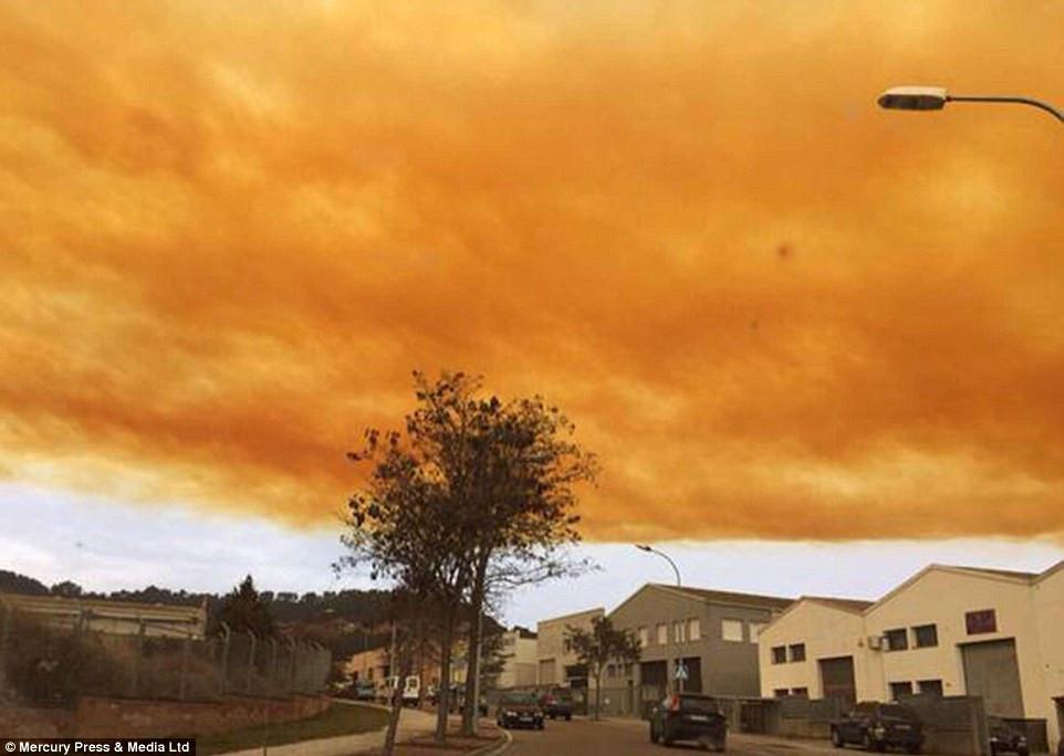 是情人節橘色的雲好浪漫…是硝酸工廠爆炸的有毒煙霧!這篇文章的首圖