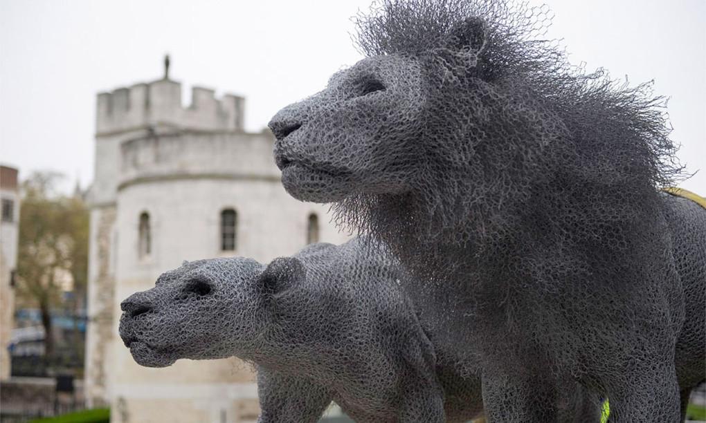 是Kendra Haste 鍍鋅絲之栩栩如生立體雕塑創作這篇文章的首圖