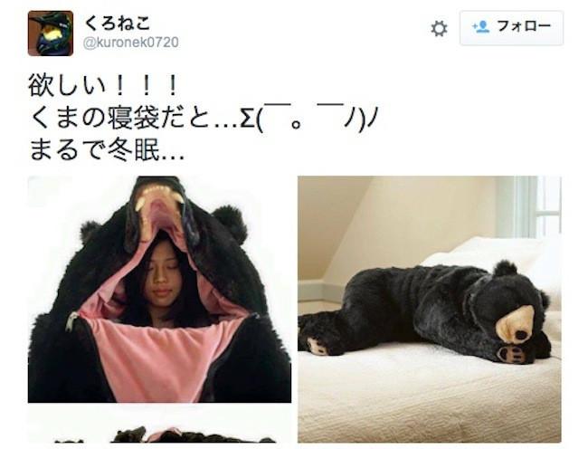 是把拉拉熊睡袋打趴!遇到熊裝死可能有用(?)的真熊款睡袋這篇文章的首圖