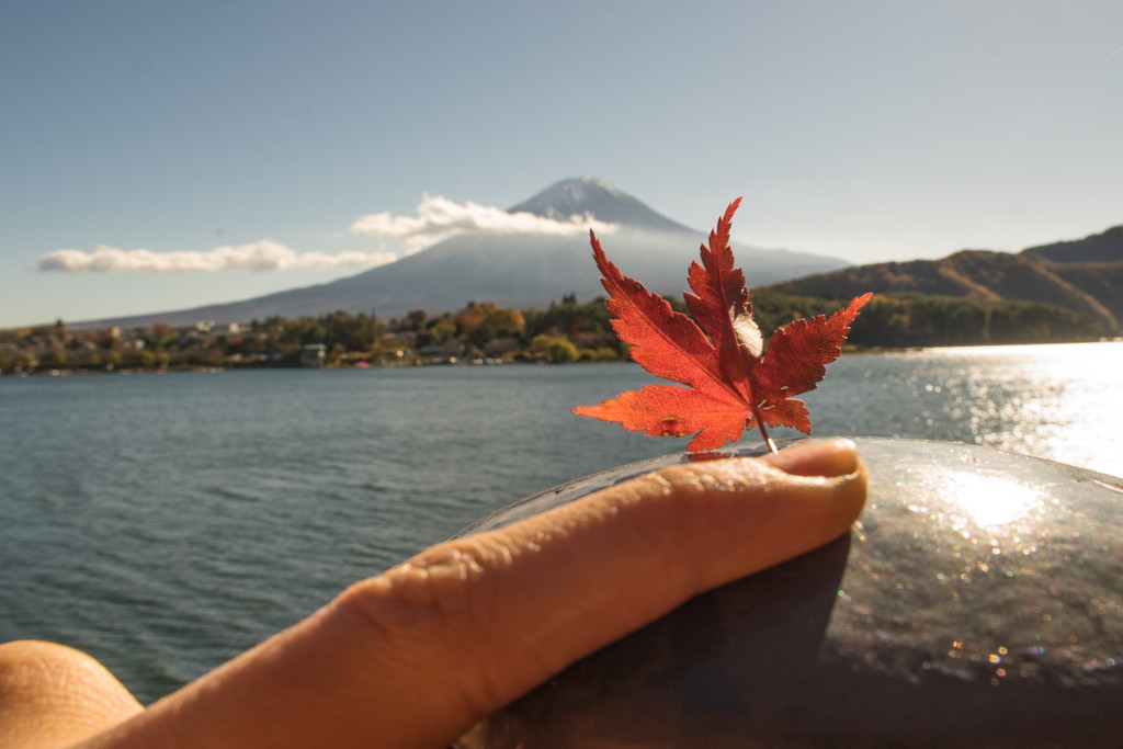 是[旅遊攝影王] 拍出令人驚歎的富士山景!楓葉、雪帽,一次滿足!(河口湖篇、空拍篇)這篇文章的首圖